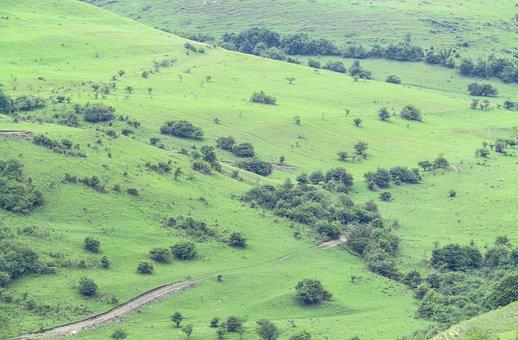 Field, Hills, Nature, Landscape, Green
