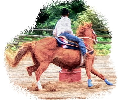 Horse, Riding, Racing, Equestrian