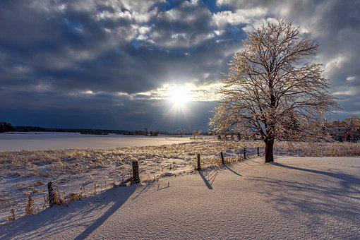 Winter, Sunset, Snow, Nature, Landscape, Tree, Sky