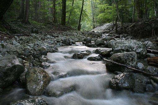 Cascade, Autumn, River, Flowing, Forest, Green, Moss