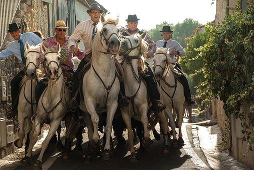 Camargue, Riders, Race, Bulls, Horses, Feria