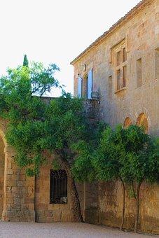 Court, Tree, Castle Courtyard, Based, Castle