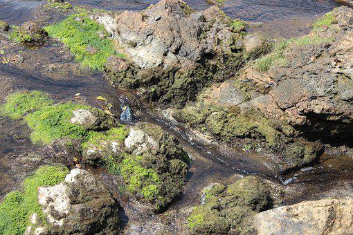 Creek, Rocks, Stream, River, Nature, Landscape, Outdoor
