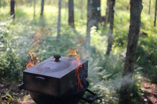 Fish, Delicacy, Smoke, Grill, Hot, Fire, Smoking, Perch