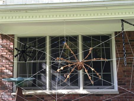 Halloween, Decor, Outside, House Exterior, Web, Spider