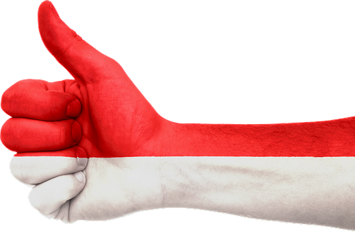 Indonesia, Flag, Hand, Thumbs, National, Patriotic