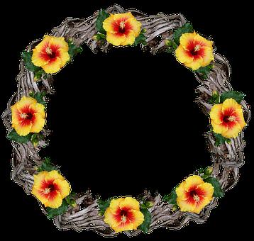 Border, Wreath, Frame, Palm Bark, Hibiscus, Flowers