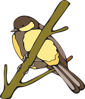 Yellow, Bird, Branch, Nut, Hatch, Wings, Beak, Feathers