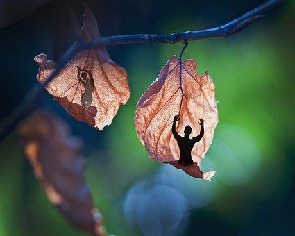 Garden, Leaves Man, Women, Light, Shadow