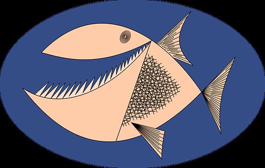 Piranha, Angry, Fish, Hungry, Teeth, Animal