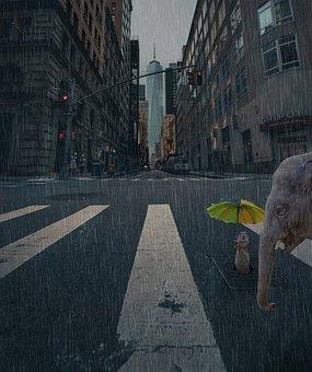 City, Street, Rain, Evening, Drizzle, Friendship
