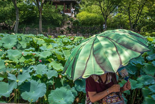 China, Asia, Travel, Eastern, Peoples, Culture, Nature