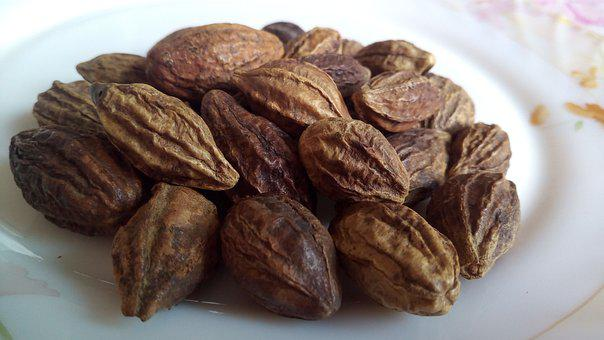 Haritaki, Terminalia Chebula, Fruit, Myrobalan