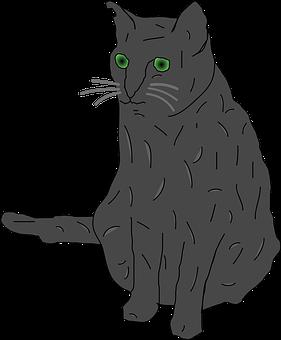 Cat, Grey, Green Eyed, Big Eyes, Sitting, Scared