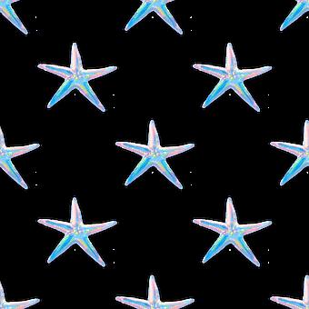 Starfish, Sea Life, Marine Life, Beach, Sea, Ocean