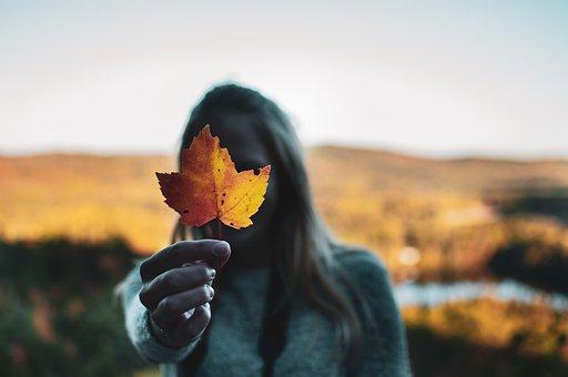 Leaf, Canada, Color, Nature, Maple, Fall