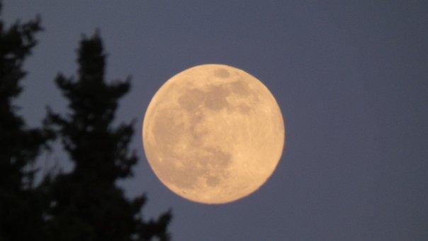 Moon, Full Moon, Night, Moonlight, The Witch, Sky, Dark