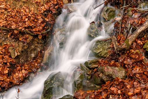 Water, Stream, Red, Leaves, Autumn, Waterfall, River