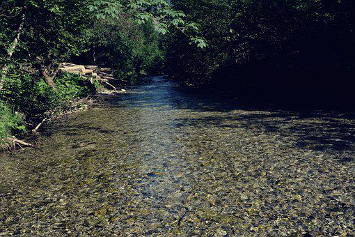 Mountain River, Nature, Clear Water, Water, Outdoors