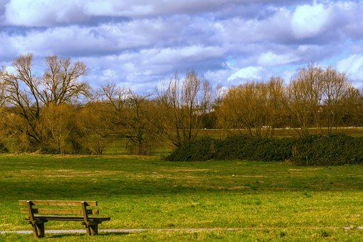 Bank, Rush, Trees, Sky, Clouds, Nature, Park Bench