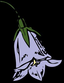 Harebell, Flower, Nature, Plant, Season