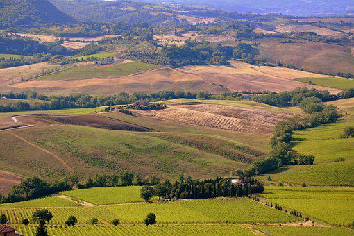 From The Top, Hill, Tuscany, Prato