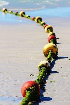 Anchor Chain, Sea, Beach, Balls, Dew, Seaweed