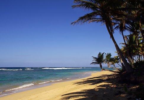Punta Cana, Bavaro, Beach, Dominican Republic, Holiday