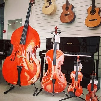 Family Of Strings, Violin, Viola, Cello, Shop