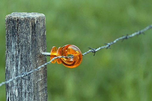 Wicker Fence, Mount, Plastic, Barbed Wire, Pasture