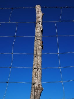Post, Pile, Fence, Wildzaun, Wildlife Fence, Mesh