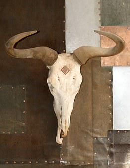 Age, Aged, Animal, Bleached, Bone, Bones, Bull, Burlap