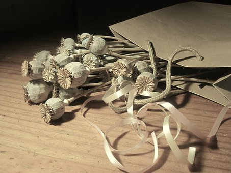 Pods, Seed, Poppy, Dry, Bleached, Paper Packet, Brown
