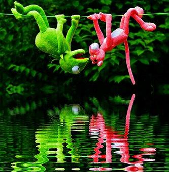 Water, Mirroring, Hang Out, Plush Toys, Kermit