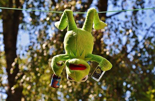 Kermit, Frog, Drink, Hang Out, Alcohol, Drunk, Rest