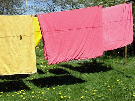 Clothes Line, Laundry, Meadow, Summer, Hang Laundry