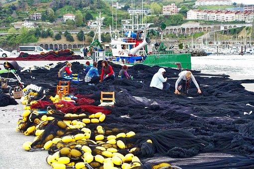 Netting, Repairs, Fishing, Port, Women, Fixing