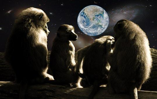 Planet Of The Apes, Ape, Baboons, Universe, Earth