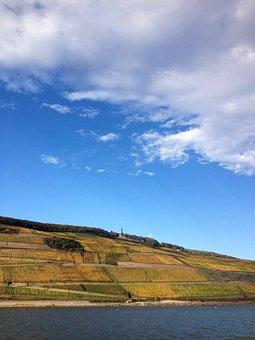 Winegrowing, Weinterassen, Bingen, Rüdesheim, Rhine