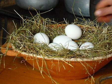 Egg, Chicken Eggs, White Eggs, Eggs On Straw, Clay Bowl