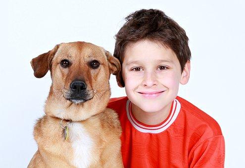 Boy, Dog, Friends, Pet, Animal, Love, Child, Family