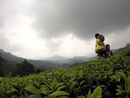 Tee, Tea Plantation, Family, Clouds, Nature, Sky