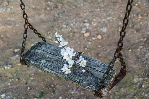 Flo, Flowers, Almond, White Flower, Plants, Spring