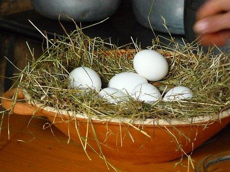 Egg, Chicken Eggs, White Eggs, Eggs On Straw, Clay Bowl