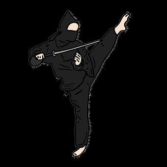 Ninja, Fighter, Hero, Shadow, Night Training