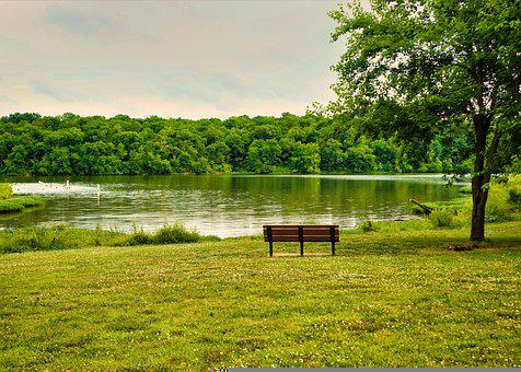 Landscape, Nature, Lake, Bench, Park, Solitude, Water