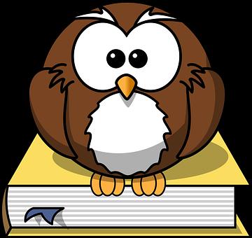 Owl, Book, Animal, Literature, Studying, Reading