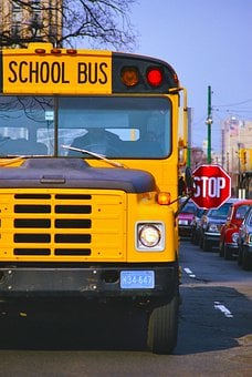 School Bus, Yellow, Transport, School