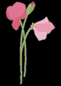 Branch, Flower, Twig, Spring, Bloom, Nature, Tree