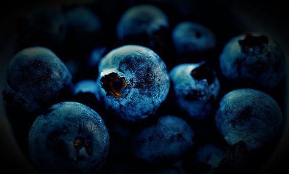 Blueberries, Black Berries, Minor Berries, Sing